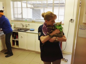 Staff-members-at-Birnam-Vet-with-our-practice-cat